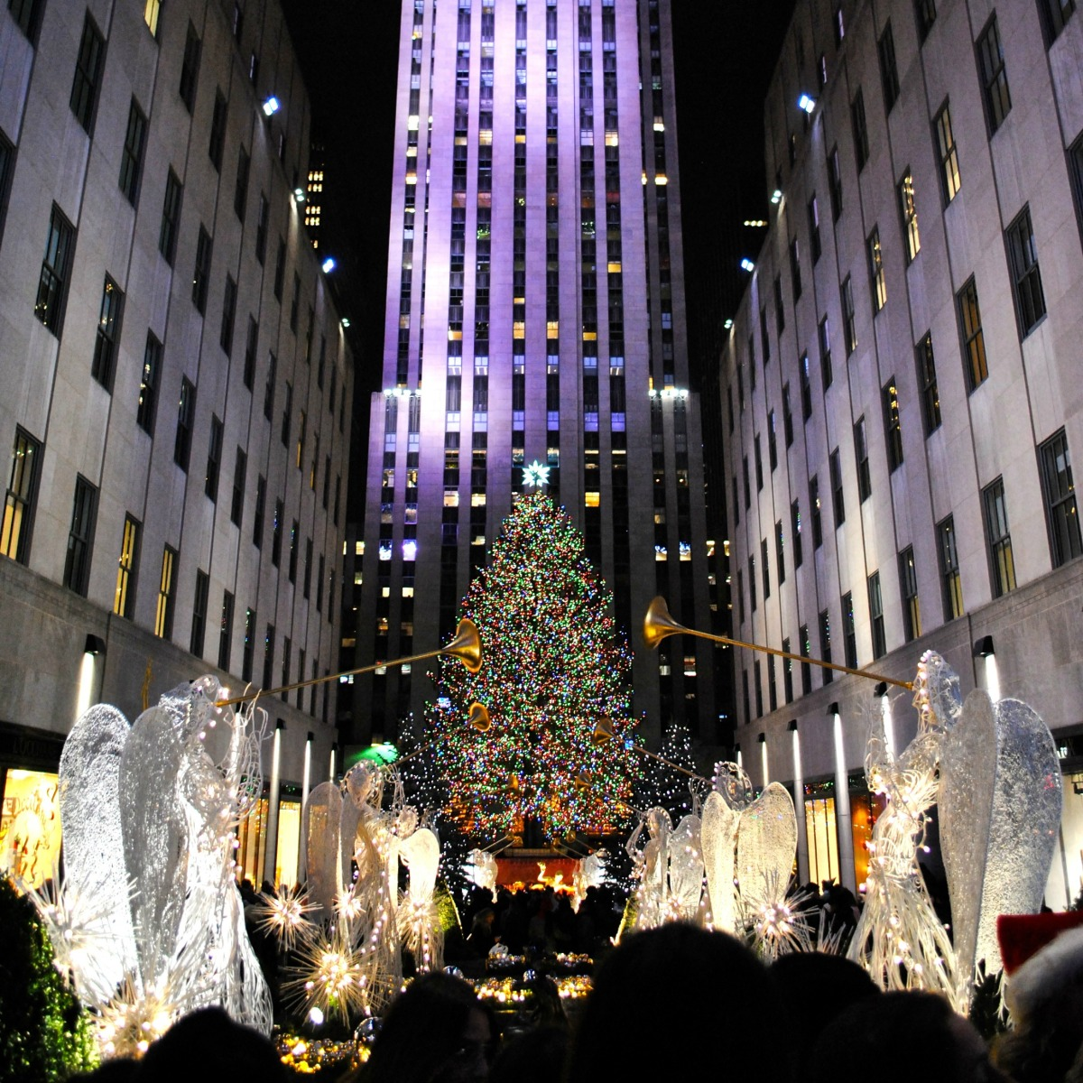 New York, NY | Best of the City\'s Christmas Lights – Miss All over ...